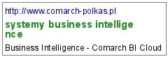 systemy business intelligence
